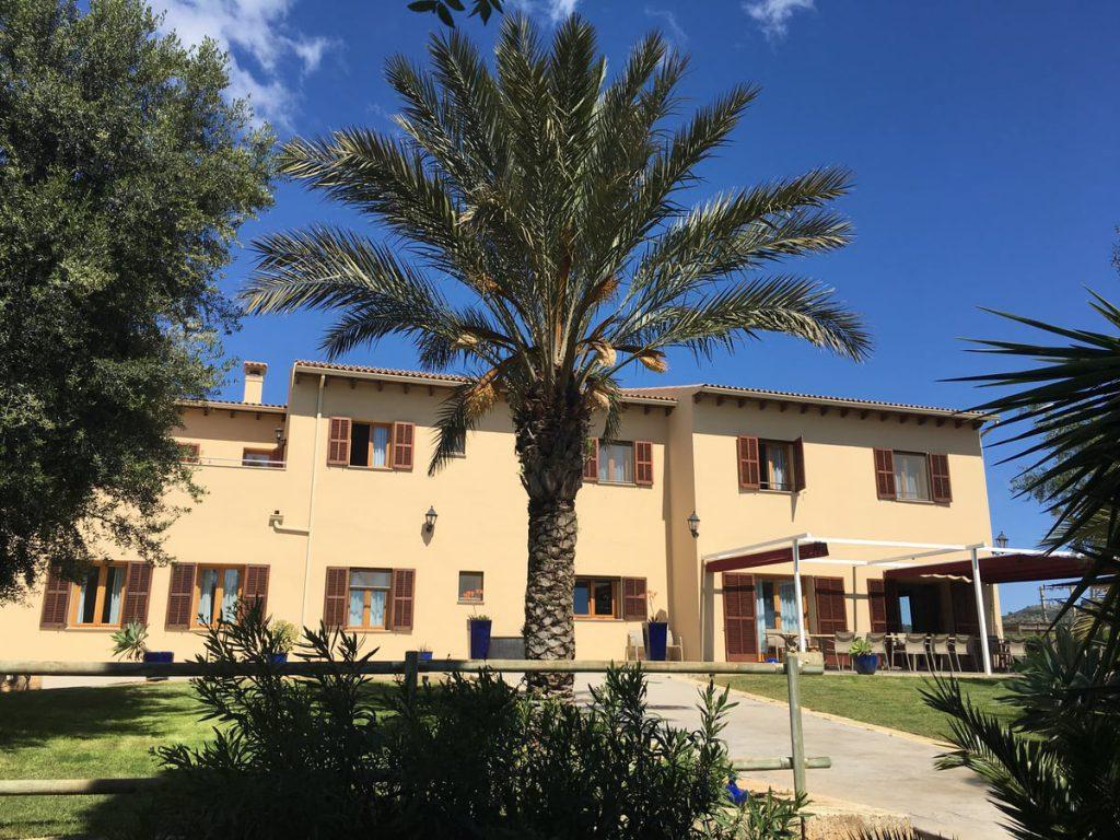 Finca auf Mallorca Haus 1 mit Palme