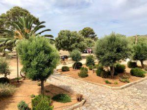 Ausblick auf den Dorfplatz Finca Mallorca für 22 Personen CAN AGUSTIN