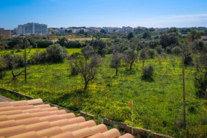 Ausblick-ins-Grüne-Ferienhaus-Mallorca-für-8-10-Personen-Can-Agustin