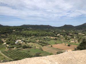 Aussicht-auf-den-Naturpark-Llevant-Arta-Mallorca