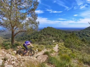 Tour mit dem Mountain-Bike