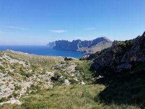 Fernblick Formender Mallorca