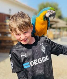Mallorca-Urlaub-mit-Kindern-und-Tieren
