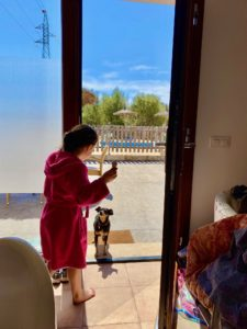 Morgendlicher Besuch von Hundedame Luna