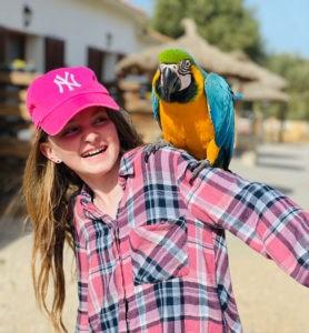 Papagei-Erlebnis-auf-Mallorca