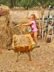 Pferdepflege-Kinder-Mallorca-