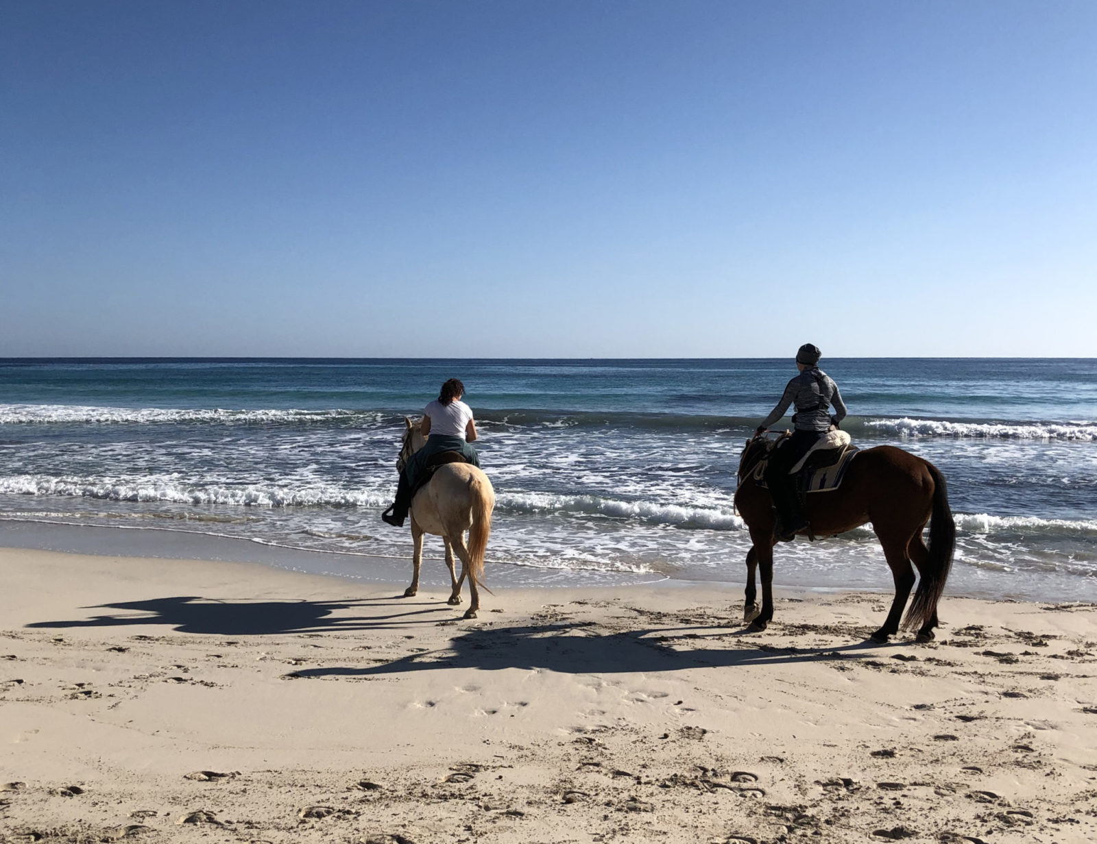 Reiten auf Mallorca am Strand