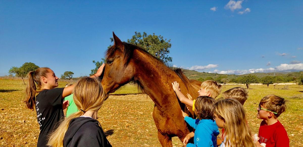 Reitunterricht-für-Kinder-auf-Mallorca