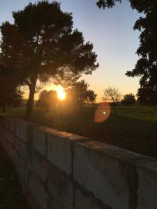 Sonnenaufgang Can Agustin im November