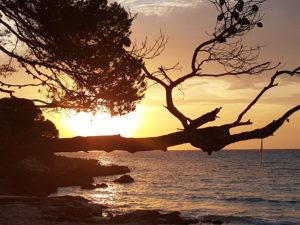 Sonnenuntergang in Cala Ratjada