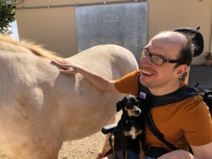 Tiere und therapeutische Angebote für Behinderte Reisende auf Mallorca