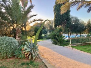 barrierefreier Weg zum Pool Finca Mallorca für 22 Personen Can Agustin