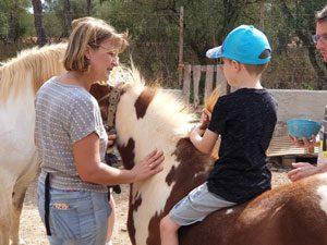 Unbeschwerter Umgang mit Pferden